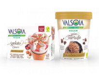 Plant-based Ice Creams