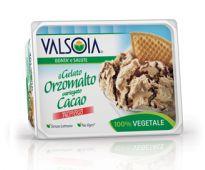 Gelato Orzomalto variegato Cacao