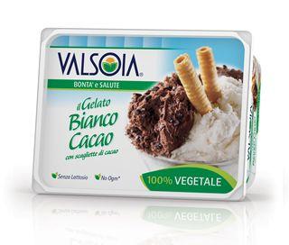 Ice Cream Plain and Cocoa