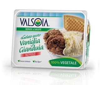 Ice Cream Vanilla and Gianduja