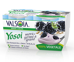Yosoi Blackberry and Wheat germ
