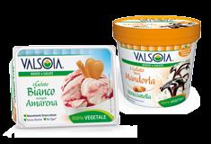 Non-dairy Ice Creams