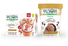 Plant-based Ice Creams