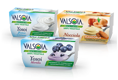 Yogurt Non-dairy Alternatives
