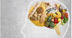 Cervello. Dieta e stimoli per mantenerlo più